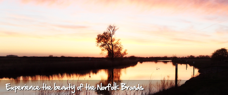 Experience the beauty if the norfolk broads