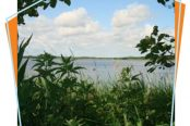 Hickling Broad National Nature Reserve