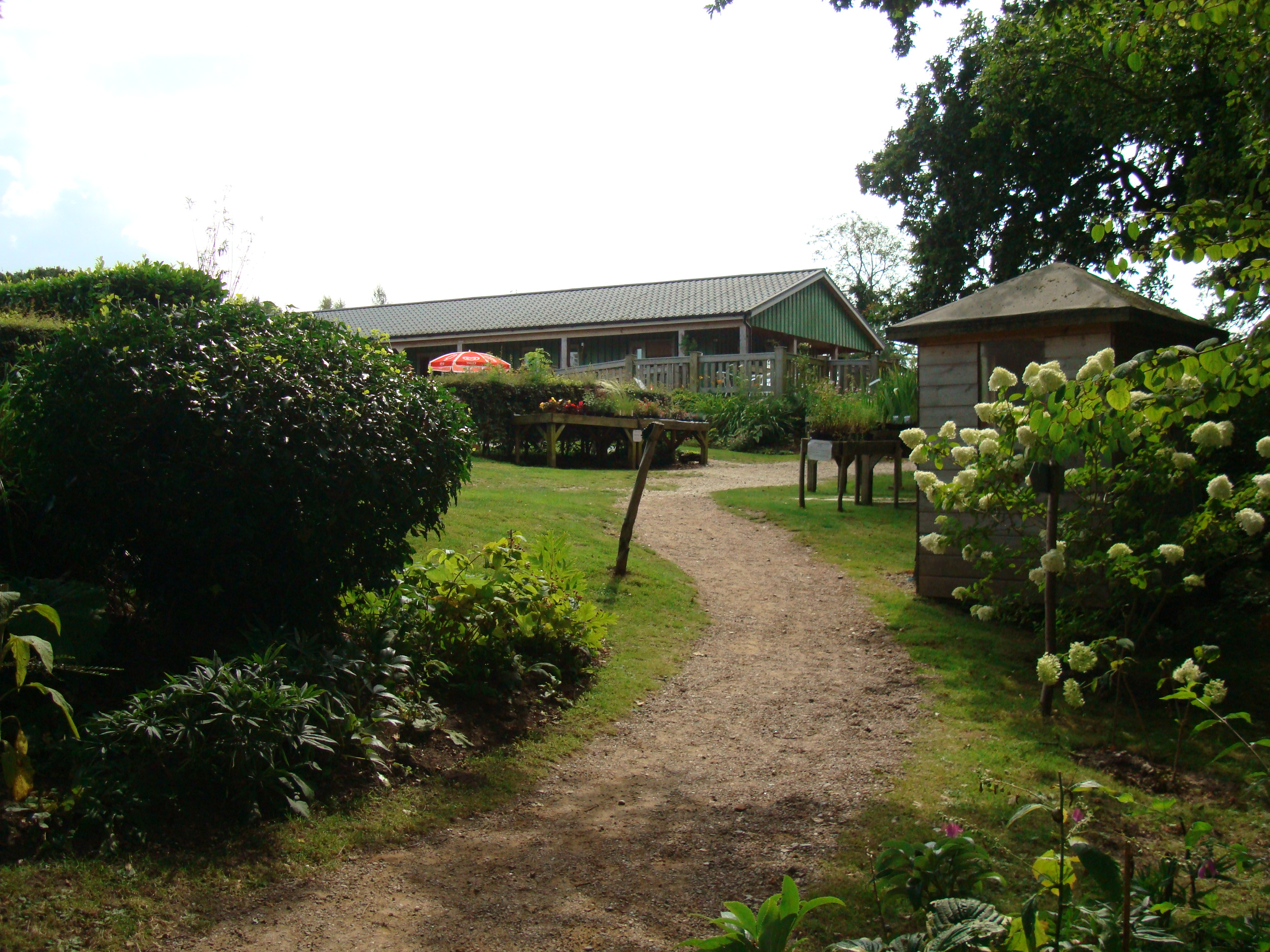 Fairhaven Woodland and Water Gardens has its very own tea room - so when looking for cafes in the Broads National Park and the surrounding area, why not pay these gorgeous gardens a visit at the same time?