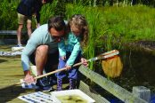 Special Offer for Richardson's Boating Holiday guests: Half-price Norfolk Wildlife Trust membership for the first year!