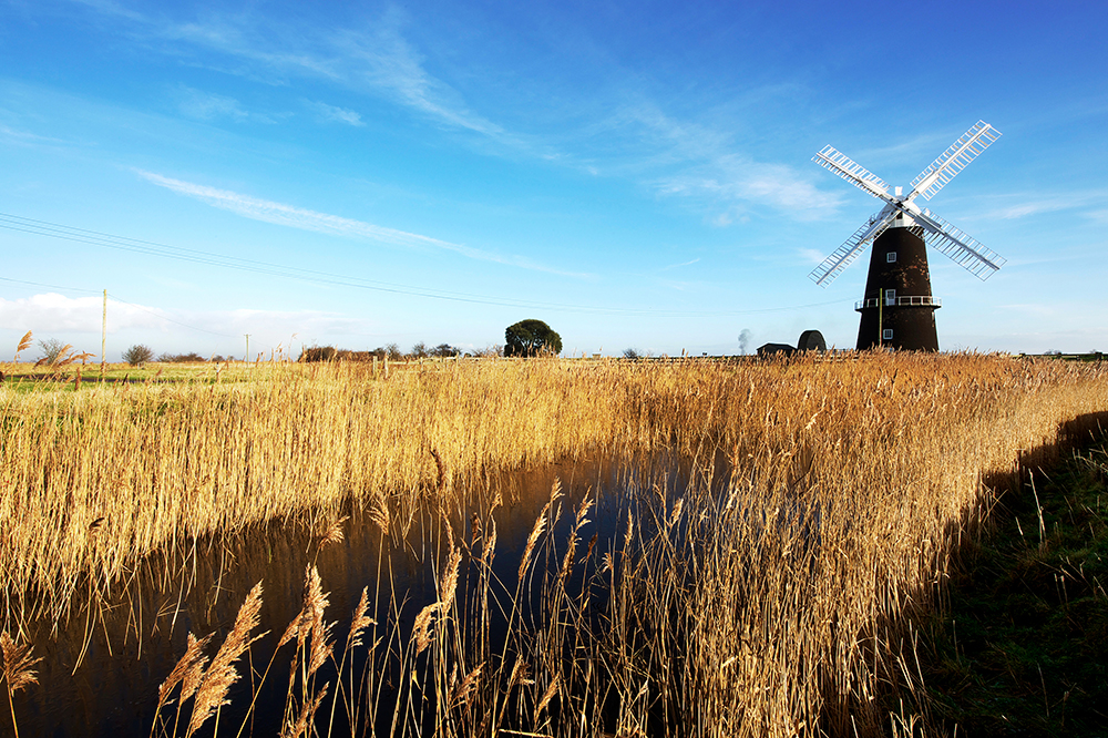 Facts About the Broads: protected wetland